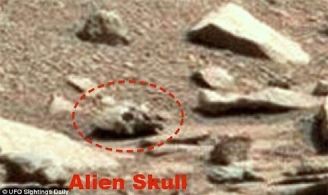 Chỉ trong tháng trước, Waring cũng đã chia sẻ một bức ảnh về một hộp sọ khác trên sao Hỏa mà ông phát hiện được, và ông chắc chắn rằng nó là của một người ngoài hành tinh.
