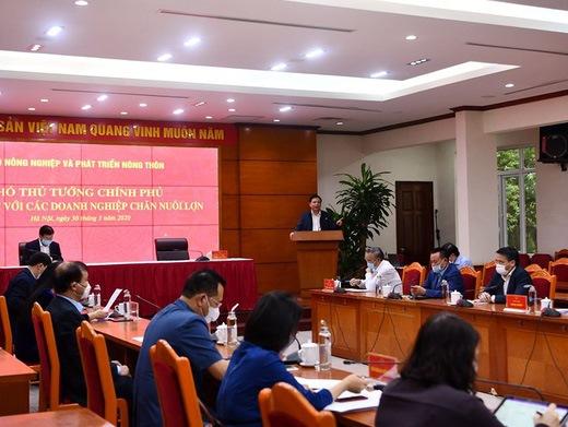 Phó thủ tướng Trịnh Đình Dũng và Bộ trưởng Nguyễn Xuân Cường có buổi làm việc với 15 doanh nghiệp chăn nuôi lớn