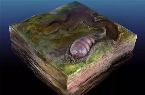 """Sốc với tổ tiên của loài người bị """"niêm phong"""" trong đá"""