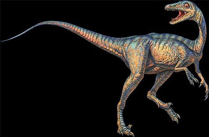 Top 10 loài khủng long ăn thịt nguy hiểm nhất thời tiền sử - Ảnh 1.