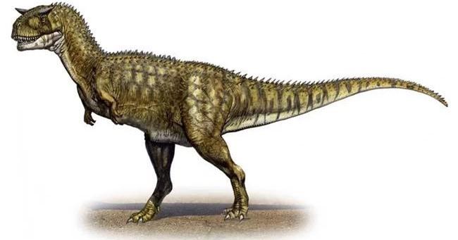 Top 10 loài khủng long ăn thịt nguy hiểm nhất thời tiền sử - Ảnh 10.