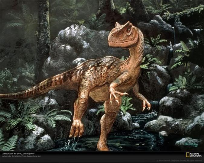 Top 10 loài khủng long ăn thịt nguy hiểm nhất thời tiền sử - Ảnh 5.