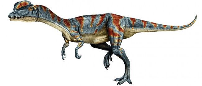 Top 10 loài khủng long ăn thịt nguy hiểm nhất thời tiền sử - Ảnh 9.