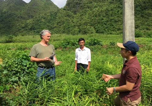 Cao Bằng: Thoát nghèo nhờ 'lộc trời' ở Hà Quảng