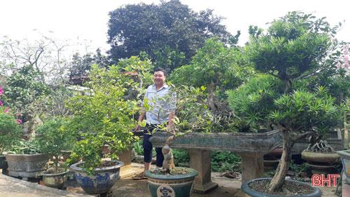 """Cũng ở làng khoa bảng này, vườn của gia đình ông Phan Văn Vũ chẳng khác gì là """"khu sinh vật cảnh"""" khi có hàng loạt những cây độc lạ, như cây sung thế long dáng (cây sung dáng rồng), cây lộc vừng thế bạt phong hồi đầu (rồng quay đầu theo gió), lộc vừng dáng phu thê (lộc vừng vợ chồng); cây si thác đổ; cây si thế đa làng… cùng hàng loạt """"kỳ hoa dị thảo"""" lạ như hoa nhài Nhật, bồ đề…"""