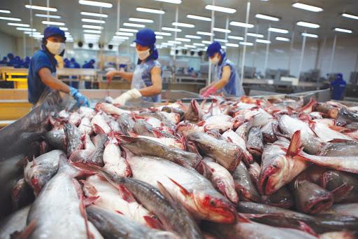 xuất khẩu hàng hoá của An Giang trong quý 1 tăng nhẹ, song vẫn chưa đạt mục tiêu tỉnh đề ra từ đâu năm.