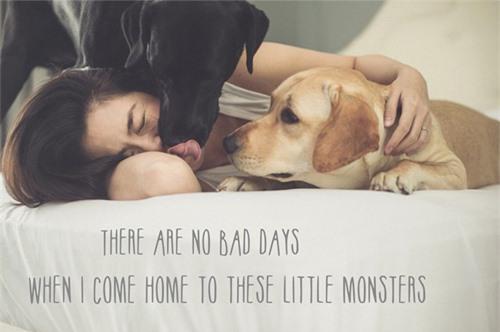 Dễ thương lẫn kinh dị khi sao Việt ôm ấp cún, trăn rắn như phụ kiện - 5