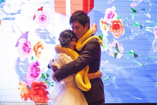 Lạ: Cô dâu, chú rể trao nhau đôi trăn sống khổng lồ thay nhẫn cưới - 2
