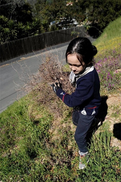 Hồng Nhung hé lộ cuộc sống với cặp song sinh tại Mỹ - Ảnh 8.