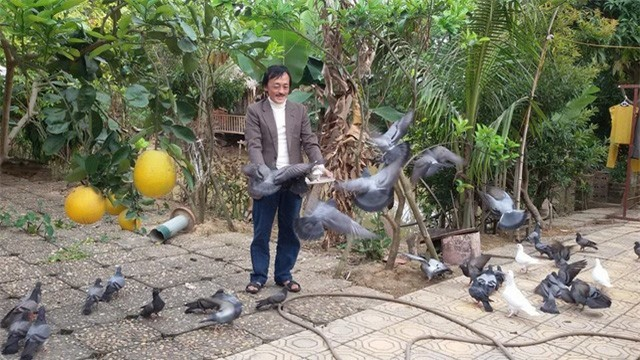 Nhà vườn 10.000m2 của nghệ sĩ Giang còi ngập hoa và trái cây - Ảnh 13.