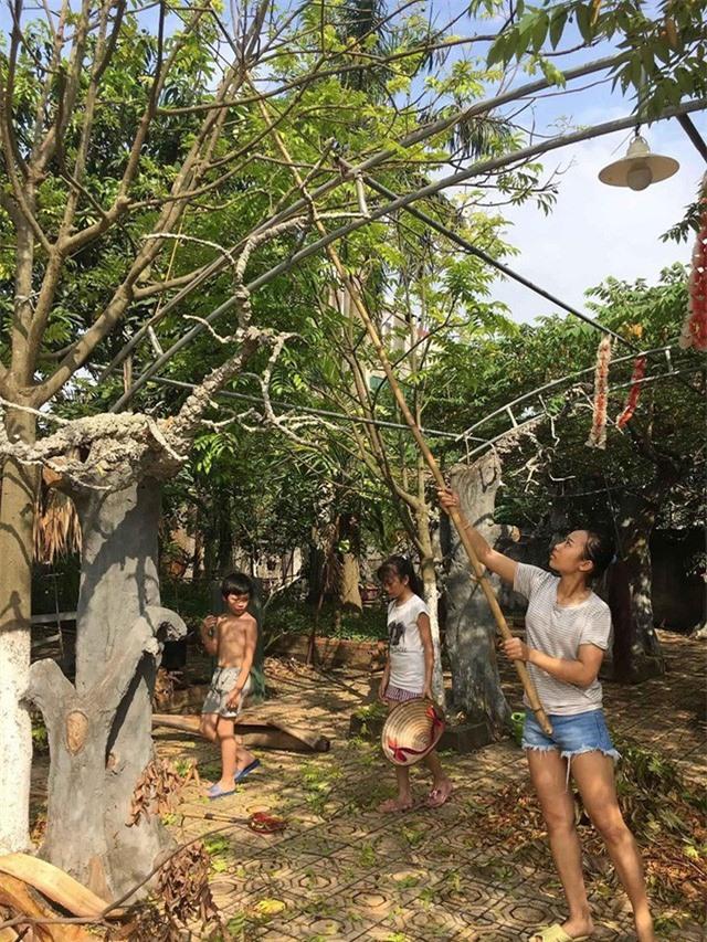 Nhà vườn 10.000m2 của nghệ sĩ Giang còi ngập hoa và trái cây - Ảnh 26.