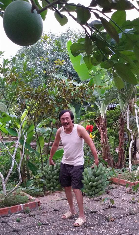 Nhà vườn 10.000m2 của nghệ sĩ Giang còi ngập hoa và trái cây - Ảnh 8.