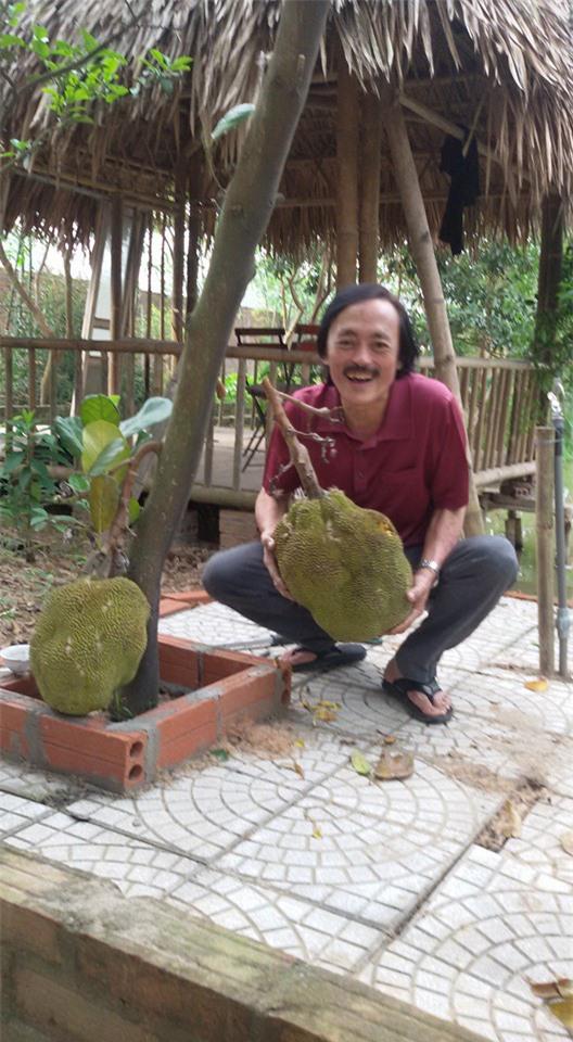Nhà vườn 10.000m2 của nghệ sĩ Giang còi ngập hoa và trái cây - Ảnh 9.