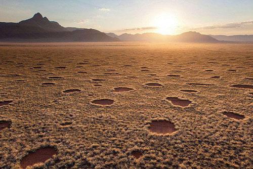 Vòng tròn trên sa mạc Namib.