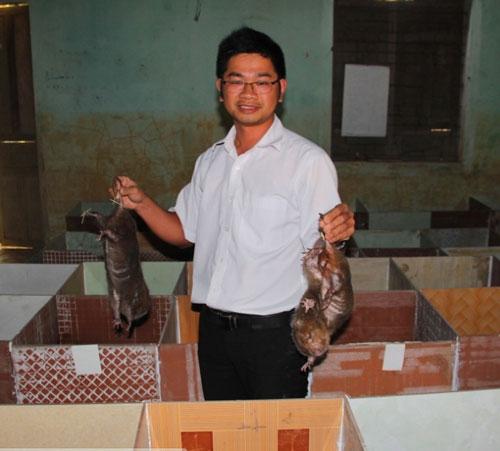 Để phát huy hiệu quả từ con dúi, nhiều người dân ở huyện Đại Lộc (tỉnh Quảng Nam) đã thành lập Tổ hợp tác nuôi dúi để giúp đỡ, hỗ trợ lẫn nhau. Ảnh: L.K.