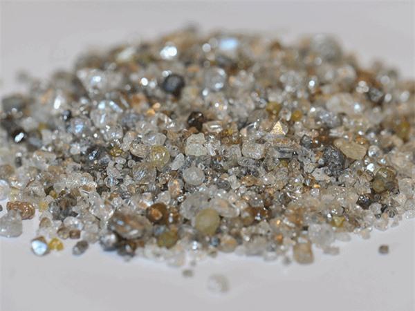 """Kỳ lạ loài cây cực """"sang chảnh"""" chỉ mọc trên mảnh đất chứa kim cương - 2"""