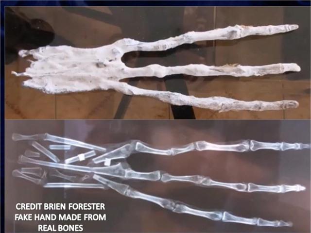 Các xác ướp đã được trao cho Viện Inkari ở Cusco, Peru vào tháng 4/2017