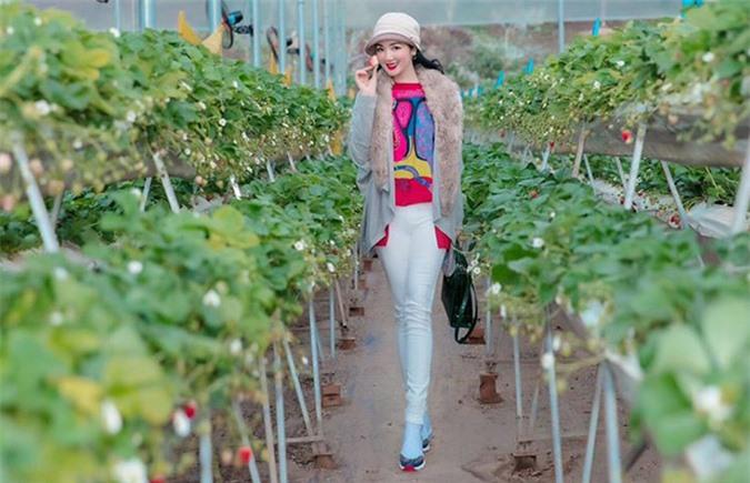 Giáng My thăm vườn dâu đang mùa thu hoạch ở Mộc Châu. Chị rất thích ăn loại quả này vì hương thơm dịu và nhiều vitamin tốt cho sức khoẻ, sắc đẹp.