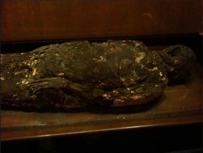 Rợn tóc gáy với những hiện vật kì quái mà viện bảo tàng trên thế giới lưu giữ - 5