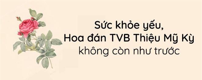 """Phận đời của Hoa đán nổi danh TVB từng bị bạn trai kém tuổi """"đá"""" chạy theo gái trẻ - 8"""