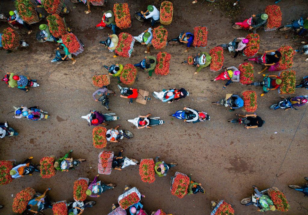 Khung cảnh tấp nập người mua bán vải thiều sau vụ mùa thu hoạch vào tháng 6 hàng năm. Mỗi năm đến mùa vải chín, người dân tại huyện Lục Ngạn, tỉnh Bắc Giang, lại dậy sớm để hái vải, đem ra chợ bán cho các thương lái. Ảnh: Tuan Tran.