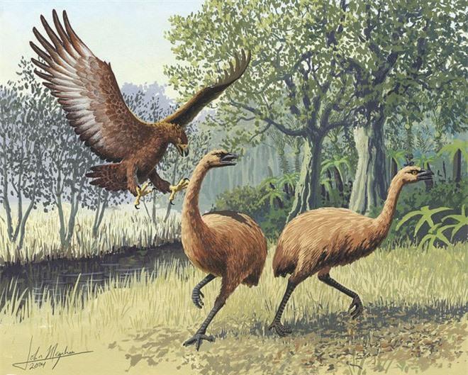 5 loài động vật thời tiền sử chuyên săn lùng tổ tiên của chúng ta - Ảnh 6.