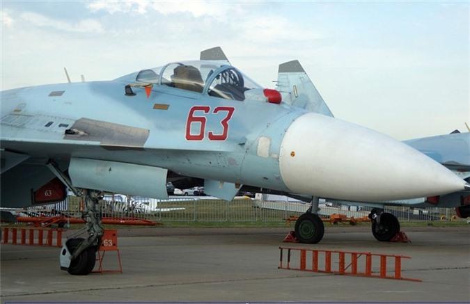 """Su-27SM3 cua Nga roi tro thanh """"kho bau"""" duoc NATO tim kiem-Hinh-8"""