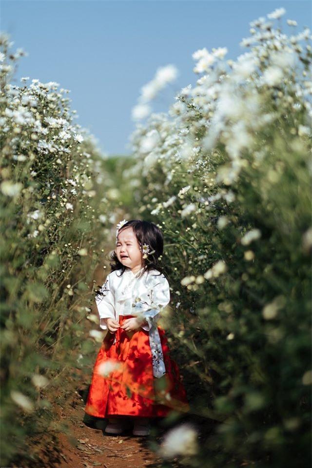 Theo chia sẻ của bố em bé, vườn cúc họa mi rất đông người, một mét vuông chả chục người cùng nhau chụp. Do đó, có thể bé gái sợ và khóc.