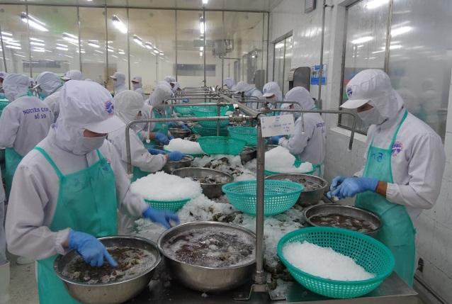 Công ty Cổ phần Chế biến và Dịch vụ Thủy sản Cà Mau (Cases) nỗ lực duy trì sản xuất trong bối cảnh dịch Covid-19.