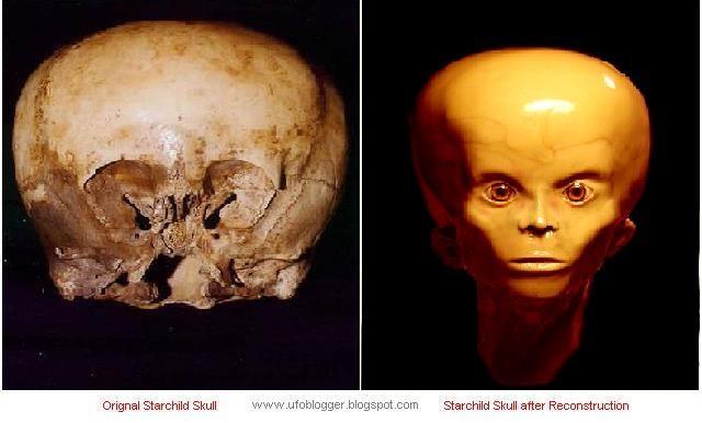 Cận cảnh hộp sọ nghìn tuổi của người ngoài hành tinh.