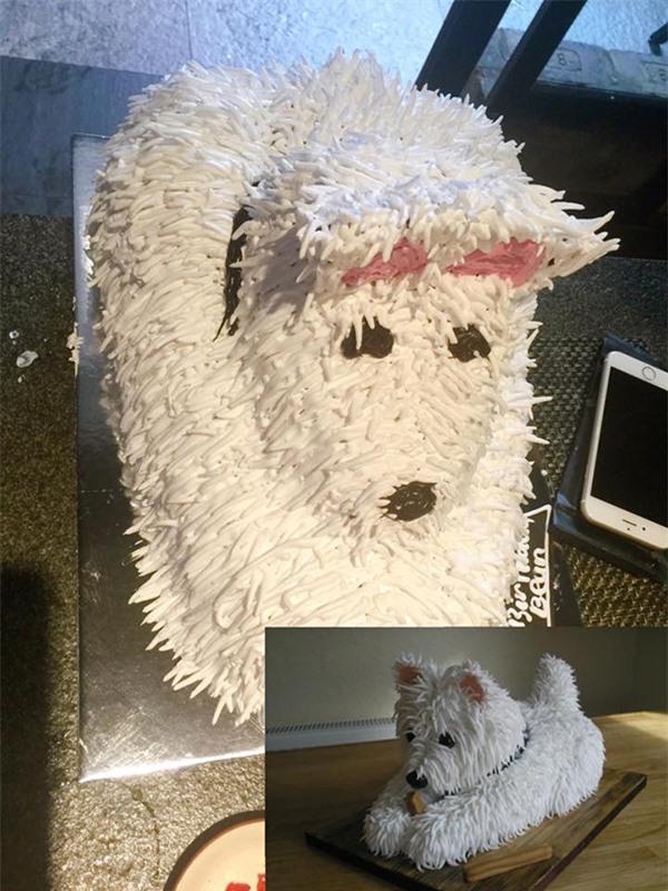 Chiếc bánh kem hình chú chó bông khiến nhiều người không nhận ra con vật.