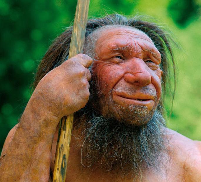 Người Neanderthals - Ảnh: Bảo tàng Neaderthals