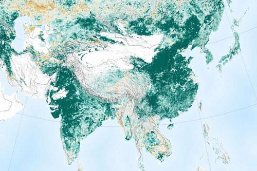 Theo những hình ảnh từ vệ tinh của NASA, Trái Đất ngày càng xanh hơn so với cách đây 20 năm. Trung Quốc và Ấn Độ - 2 quốc gia đông dân nhất thế giới đang khởi động hàng loạt các chiến dịch trồng cây. Một nghiên cứu mới công bố gần đây cho thấy khu vực màu xanh trên toàn cầu đã tăng 5% so với đầu những năm 2000, tương đương với diện tích của toàn bộ rừng Amazon.