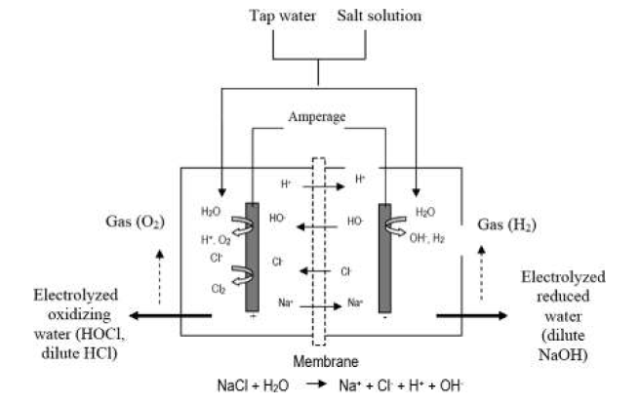 Hình 1. Sơ đồ điện phân nước muối loãng và các sản phẩm (Huang và ctv, 2008)