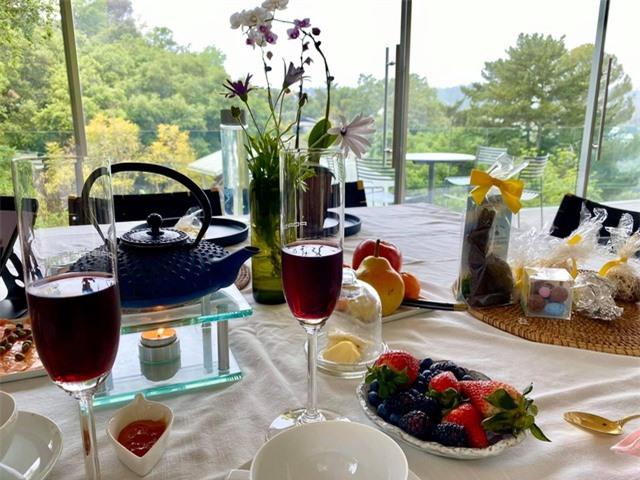 Cuộc sống bình yên của Diva Hồng Nhung cùng cặp song sinh tại biệt thự ở Mỹ - 13