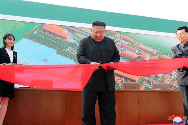 Quan chức đào tẩu Triều Tiên xin lỗi vì loan tin ông Kim Jong-un bệnh nặng - 1