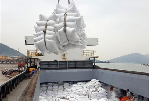 Giá gạo xuất khẩu của Việt Nam tăng 6,3% (Ảnh Internet)