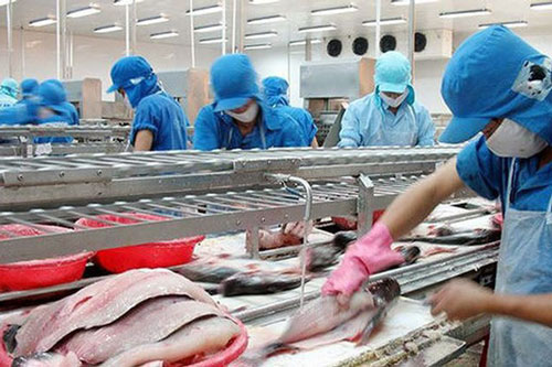 Xuất khẩu thủy sản 4 tháng đầu năm giảm 10% (Ảnh Internet)