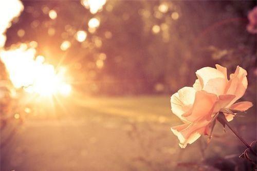 10 điều không bao giờ được phép quên trong cuộc đời, mỗi điều đều là một bài học vô giá! - Ảnh 2