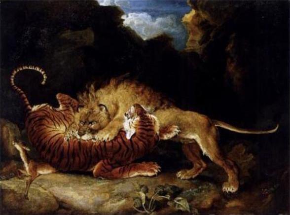 Hỏi cực khó: Hổ và sư tử đánh nhau, con nào sẽ thắng? - Ảnh 5.
