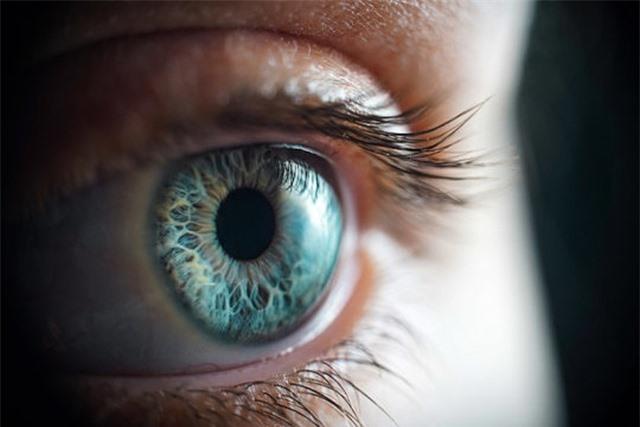 Phát hiện cách truyền tín hiệu đặc biệt của mắt đến não - 1