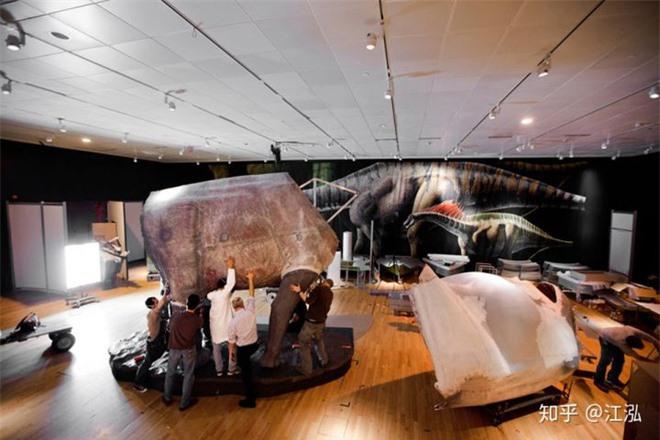Các nhà cổ sinh vật học tính trọng lượng của khủng long như thế nào? - Ảnh 4.