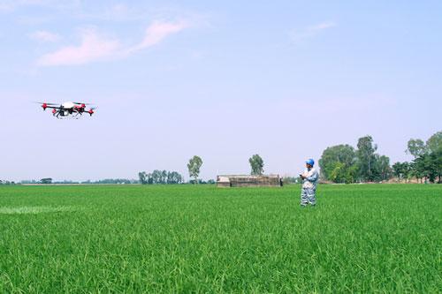 Đây là lúc cần số hóa nông nghiệp nhằm giúp kiểm soát sản xuất, XK, cân đối cung cầu, truy xuất nguồn gốc