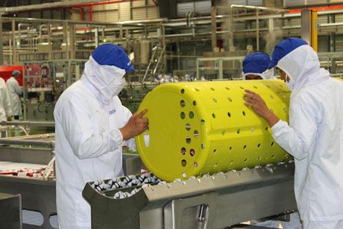 """Khi EVFTA có hiệu lực, xuất khẩu nông sản Việt như được """"chắp thêm cánh"""""""