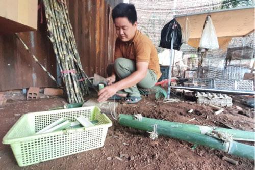 Những thanh tre là thức ăn khoái khẩu của dúi được anh Quang chuẩn bị chu đáo. Ảnh: Trần Trung.