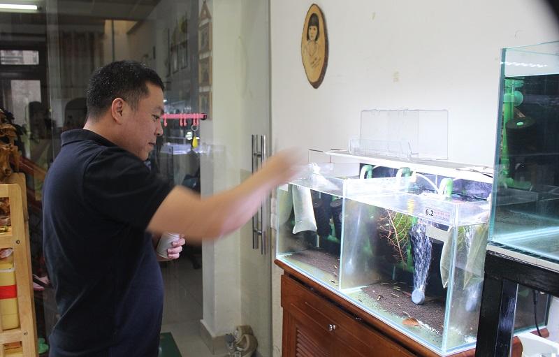 Sau giờ làm việc, anh Vinh dành thời gian chăm sóc hơn 40 hồ tép cảnh của mình như một thú vui tao nhã, giải trí