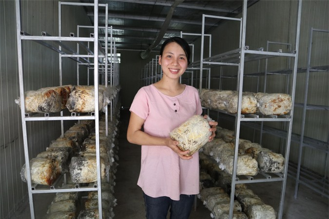 Làm giàu từ trồng nấm rơm bằng công nghệ sinh học - Ảnh 2.