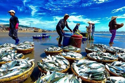 Xuất khẩu hải sản năm 2020 sẽ đạt 3,25 - 3,3 tỷ USD (Ảnh: Internet)