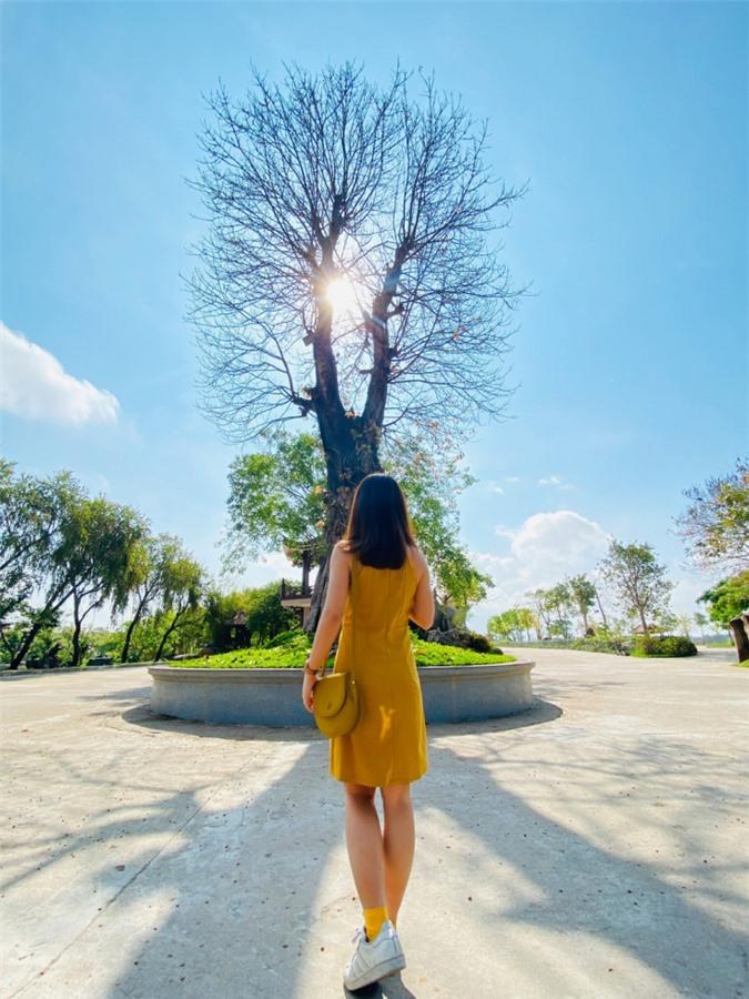 Sống ảo ở những điểm lạ mà quen khi vi vu Phú Yên, Quy Nhơn ảnh 06
