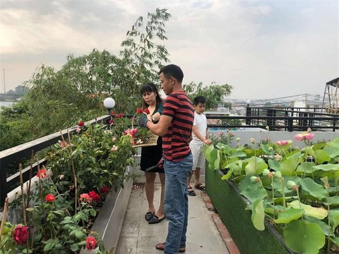 sân vườn trên sân thượng 1